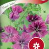 Malva sylvestris 'Purple Satin'-thumbnail