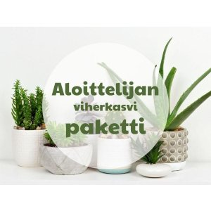A beginner's green plant package T_PRODUCT_IMAGE