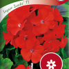 Pelargonium 'Inspire Scarlet F1'-thumbnail