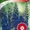 Delphinium 'Blue Donna'-thumbnail
