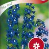 Delphinium 'Blue Bird'-thumbnail