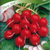 Retiisi 'Cherry Belle'-thumbnail