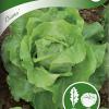 Lettuce 'Diana'-thumbnail