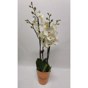 Iso Deluxe orkidea 4 vanainen n. 75 cm Tuotekuva