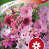 Summer flower mix 'Pink Shades'-thumbnail