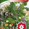 Vine flower mix 'Nelson mixture'-thumbnail