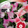 Sweet pea 'Stars and Stripes'-thumbnail