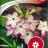Nicotiana Sanderae 'Avalon Lime/Purple Bicolour F1'-thumbnail