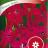 Koristetupakka 'Crimson Bedder'-thumbnail