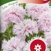 Papaver 'Lilac Pompom'-thumbnail