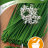 Allium tuberosum 'Garlic Oriental'-thumbnail