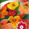 Garden nasturtium-thumbnail