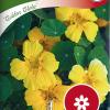 Garden nasturtium 'Golden Globe'-thumbnail