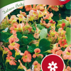 Garden nasturtium 'Salmon Baby'-thumbnail