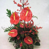 Christmas arrangement of flamingo flowers-thumbnail