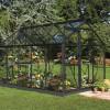 Greenhouse HALLS POPULAR 6,2 M² glass, black body-thumbnail