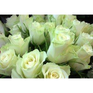 Ruusukimppu valkoinen Tuotekuva