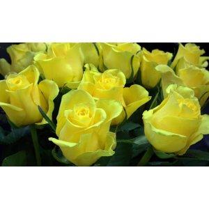 Ruusukimppu keltainen Tuotekuva