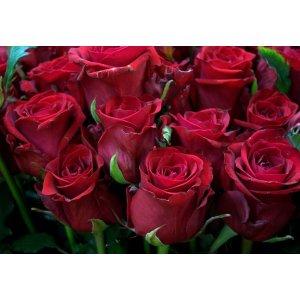 Ruusukimppu punainen Tuotekuva