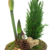 Christmas flower arrangement of amaryllis-thumbnail