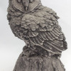 Owl on the stump-thumbnail