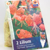 Tigrinum Splendens-thumbnail
