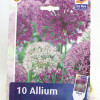 Allium Mix-thumbnail