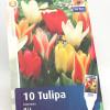 Tulppani Mix-thumbnail