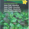 Lettuce Mix 'Asia Spicy green Mix'-thumbnail