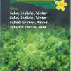 Winter lettuce 'Diva'-thumbnail
