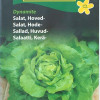Head lettuce 'Dynamite'-thumbnail