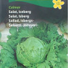 Ice berg lettuce 'Calmar'-thumbnail