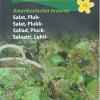 Leaf lettuce 'Amerikanicher brauner'-thumbnail