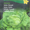Head lettuce 'Attractie-thumbnail