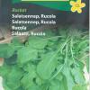 Salaatti, rucola 'Rocket'-thumbnail