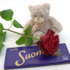 Rose, chocolate and teddy bear-thumbnail