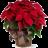 Joulutähti iso, koristeltu -thumbnail