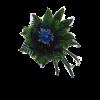 Sininen kimppu-thumbnail
