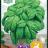 Basil 'Large Leaved'-thumbnail