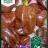 Chocolate Scotch Bonnet-thumbnail