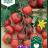 Gardener's Delight-thumbnail