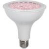 LED Lamp E27 PAR38 Plant Light Cultivate kasvivalo Tuotekuva