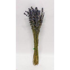 Kuivattu laventeli Tuotekuva