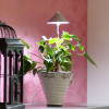 Sunlite Grow light with telescopic stand 7W grey-thumbnail