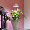 Sunlite Grow light with telescopic stand 7W Lime green-thumbnail