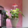 Sunlite Grow light with telescopic stand 7W red-thumbnail